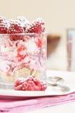 Raspberry freshness Stock Photography