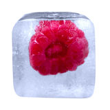 Raspberry frozen in ice cube. Isolated on white background Royalty Free Stock Photos
