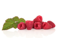Raspberry Fruit Stock Photos