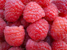 Raspberry fruit background. Fresh raspberries background closeup photo Stock Photos