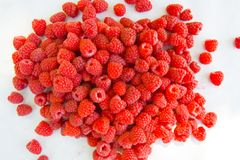 Raspberry fruit background Royalty Free Stock Images