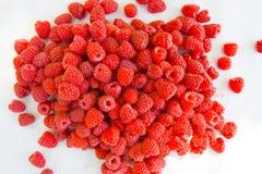 Raspberry fruit background Royalty Free Stock Images