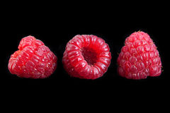 Raspberry fruit on black stock photography