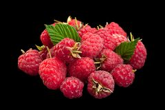 Raspberry fruit closeup on black royalty free stock photography