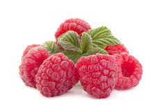Raspberry fruit closeup Stock Images