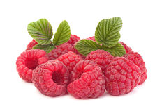 Raspberry fruit closeup Stock Photo