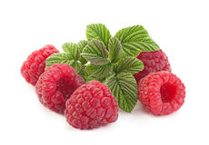 Raspberry fruit closeup Royalty Free Stock Images