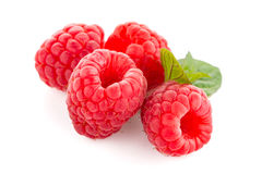 Raspberry fruit isolated Stock Photo