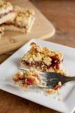 Raspberry Fruit and Oatmeal Bars. Homemade raspberry fruit and oatmeal bars Royalty Free Stock Photos