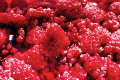 Raspberry fruit, red and beautiful Royalty Free Stock Photo