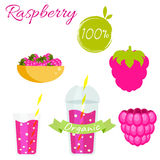 Raspberry fruit and smoothie juice vector set Royalty Free Stock Photos