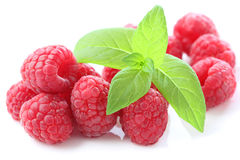 Raspberry fruit  Royalty Free Stock Image