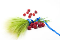 Raspberry fruit on white background Stock Image