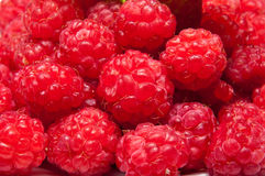 Raspberry fruits Royalty Free Stock Photo