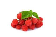 Raspberry with green leaf isolated on the white. Background Royalty Free Stock Photos