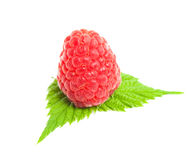Raspberry with green leaves. Isolated on a white background Stock Photo