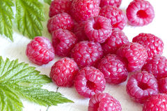 Raspberry with green leaves on white background. Closeup Stock Photography