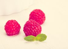 Raspberry green leaves and white bowl.  Toned in warm colors Stock Images