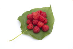Raspberry and green sheet Royalty Free Stock Photo