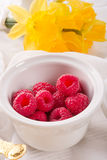 Raspberry harvest Stock Photos