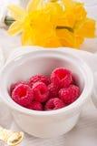 Raspberry harvest Stock Photos