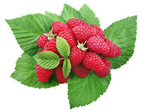 Raspberry. heap isolated on white, clipping path. Raspberry. heap isolated on white background, clipping path Royalty Free Stock Photography