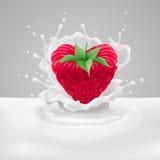 Raspberry heart with milk Stock Photos