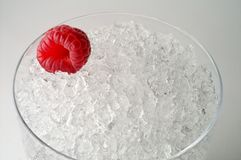 Raspberry on ice. Raspberry on crushed ice isolated Royalty Free Stock Photography
