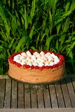 Raspberry ice-cream cake Royalty Free Stock Images