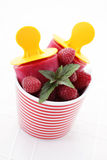Raspberry ice creams Stock Images