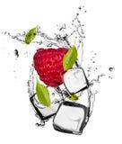 Ice fruit Stock Photos