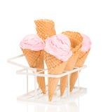 Raspberry Ices Stock Image