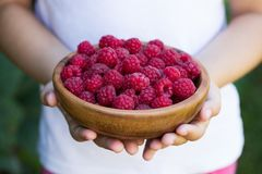 Free Raspberry In Bowl On Child Hands Of Little Girl. Stock Images - 102946374