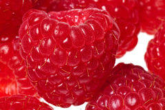 Raspberry isolated Royalty Free Stock Images