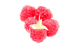 Raspberry (isolated) Stock Photo
