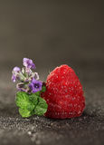 Raspberry. Isolated on black background Royalty Free Stock Images