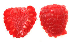 Raspberry isolated. Fresh raspberry isolated on the white background Stock Images