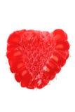 Raspberry isolated Royalty Free Stock Image