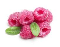 Raspberry  Isolated Stock Photography