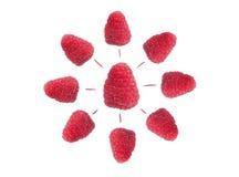 Raspberry isolated on white. Background stock photo