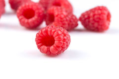 Raspberry isolated on white background Royalty Free Stock Images