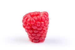 Raspberry isolated on white background Royalty Free Stock Photography