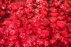 Raspberry jam. Royalty Free Stock Photos