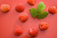 Raspberry juice. Fresh healthy raspberries representing raspberry juice concept Royalty Free Stock Photos