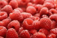 Raspberry juicy ripe Stock Images