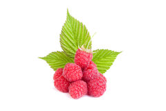 Raspberry with leaf Stock Images