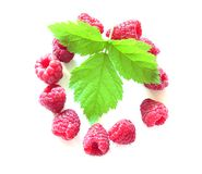 Raspberry and leave Royalty Free Stock Photography