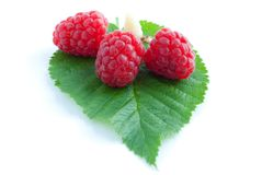 Raspberry with leaves Royalty Free Stock Image