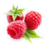 Raspberry with leaves isolated on white Royalty Free Stock Photo