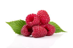 raspberry with leaves isolated on white royalty free stock image